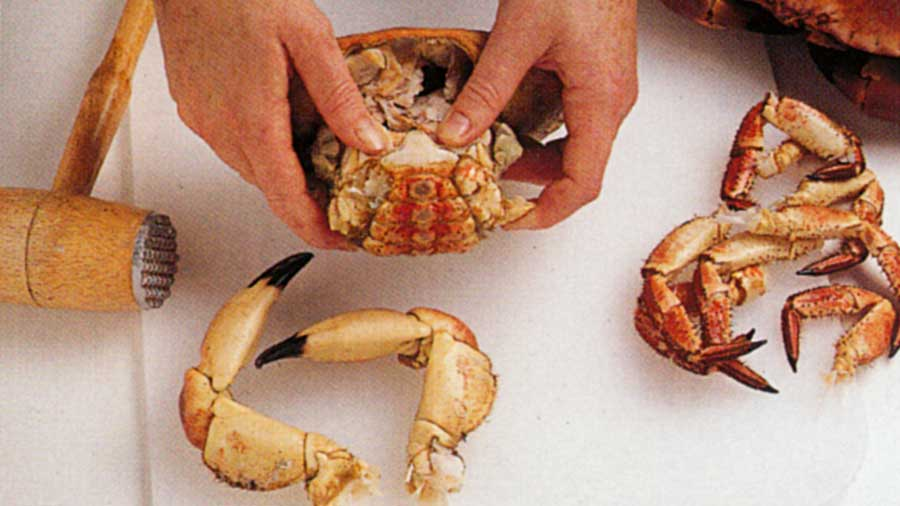 Fish-How-to-clean-how-to-choose-how-to-store-and-more-steps-how-to-crab-steps