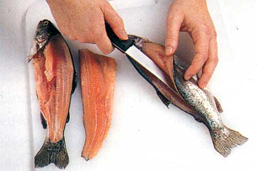 Gutting-a-Fish-How-to-Clean-Fish-How-to-Fillet-a-Fish-step-1