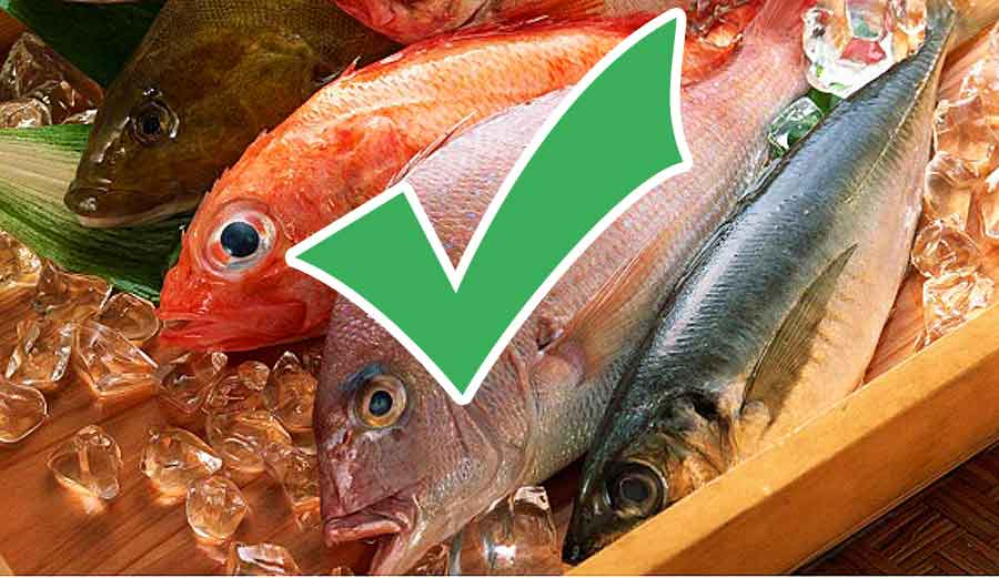 How-to-Choose-Fresh-Fish-cooking-tips-store-howtomatic
