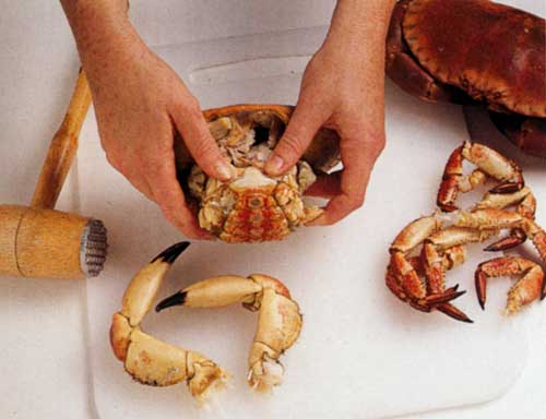 How-to-Prepare-Cooked-Crab-howtomatic-tips-cooking-steps-1