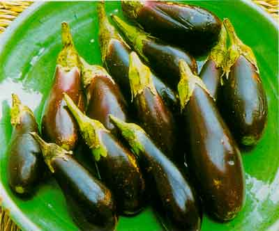 How to Prepare Eggplant (Aubergines) for Cooking and How to Choose the Best Ones