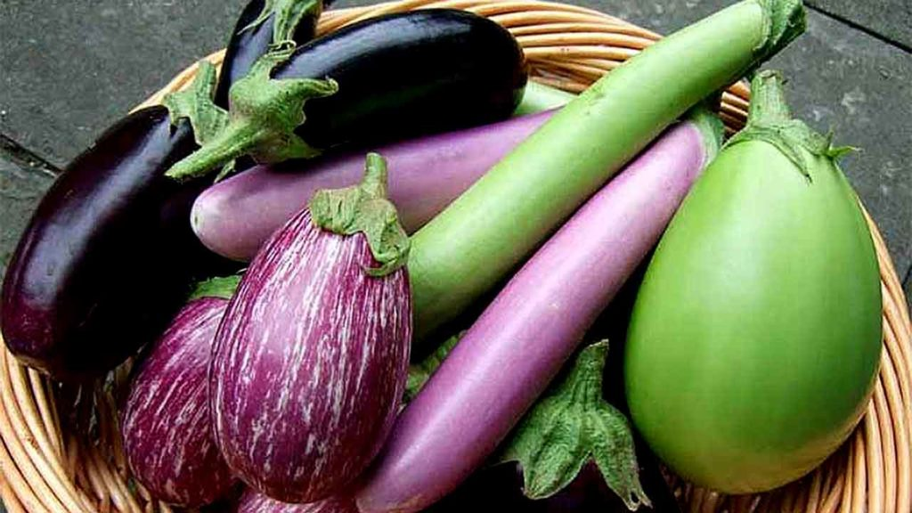 How to Prepare Eggplant (Aubergines) for Cooking and How to Choose the Best Ones-nutrition facts