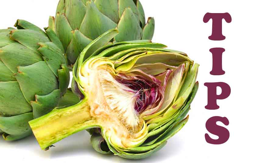 Things to Know About Artichokes-How to Choose-Store Them-How To Cut An Artichoke