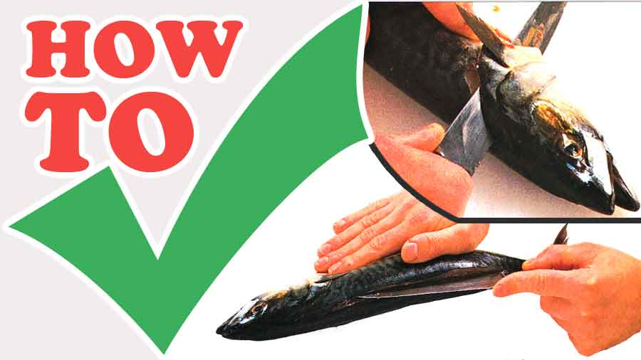 How-to-Fillet-a-Round-Fish-step-by-step-with-photo