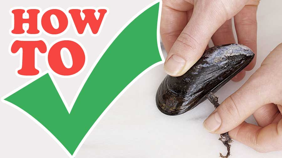 How-to-Prepare-Mussels-step-by-step-with-photo-tips